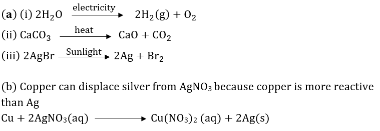 Class 10 Chapter 1 Chemical Reactions And Equations Extra Question 51