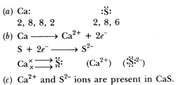 Class 10 Chapter 3 Metals and Non metals Extra Question 24