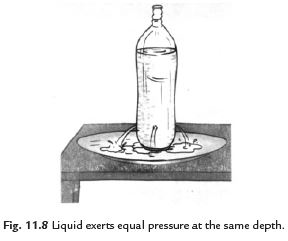 Class 8 Science Chapter 11 Force and Pressure Important Question 7