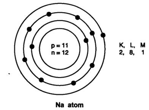 Extra Questions for Class 9 Science Chapter 4 Structure of the Atom 2