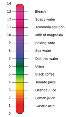 Important Questions for Class 7 Science Chapter 5 Acids Bases and Salts image 1