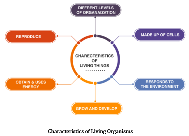 CBSE Class 6 Science Notes Chapter 9 The Living Organisms Characteristics and Habitats part 1